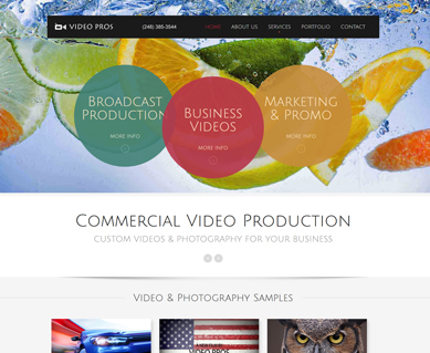 Corporate Website Design Portfolio Michigan